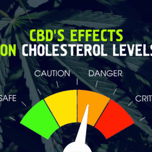 CBD's Effects on Cholesterol Levels